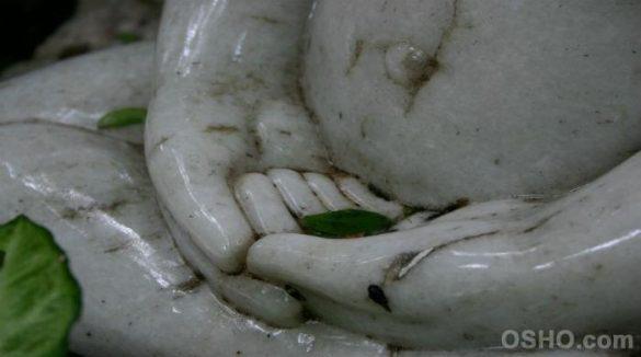 The Energy Body Osho Meditation &Amp; Relationship