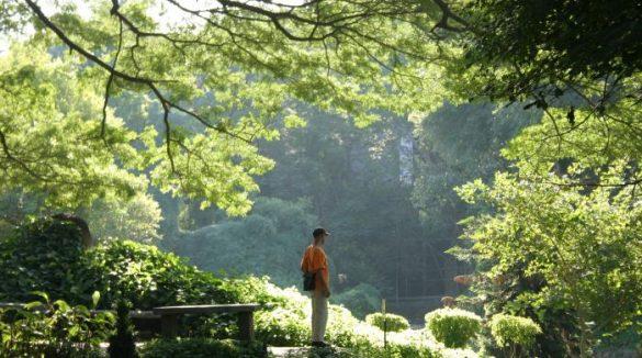 Mediation Is Emptiness 3 Osho Meditation &Amp; Relationship