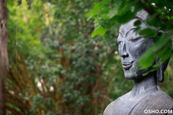 Osho Osho Meditation &Amp; Relationship